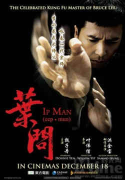 Ip Man film feature