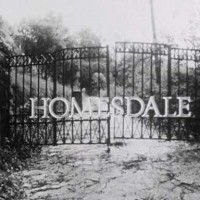 Homesdale-poster