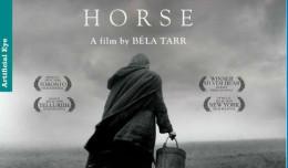 torinski konj poster-r50